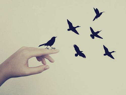 largebird